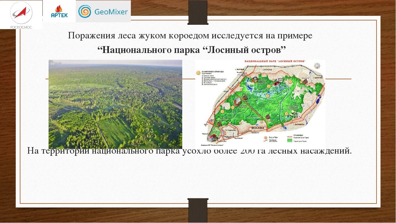 """Поражения леса жуком короедом исследуется на примере """"Национального парка """"Ло..."""