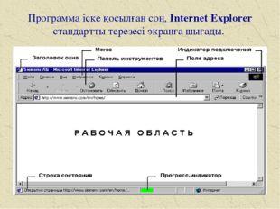 Программа іске қосылған соң, Internet Explorer стандартты терезесі экранға шы