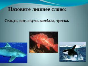 Назовите лишнее слово: Сельдь, кит, акула, камбала, треска.