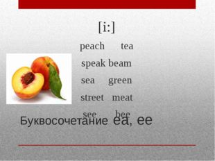 Буквосочетание ea, ee [i:] peach tea speak beam sea green street meat see bee