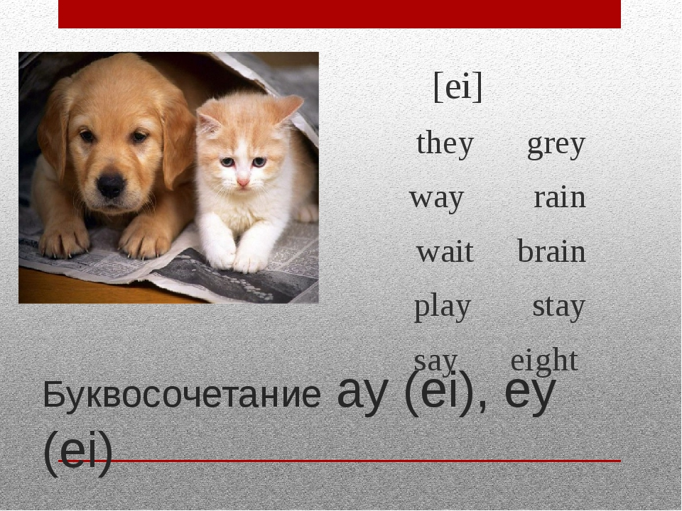 Буквосочетание ay (ei), ey (ei) [ei] they grey way rain wait brain play stay...