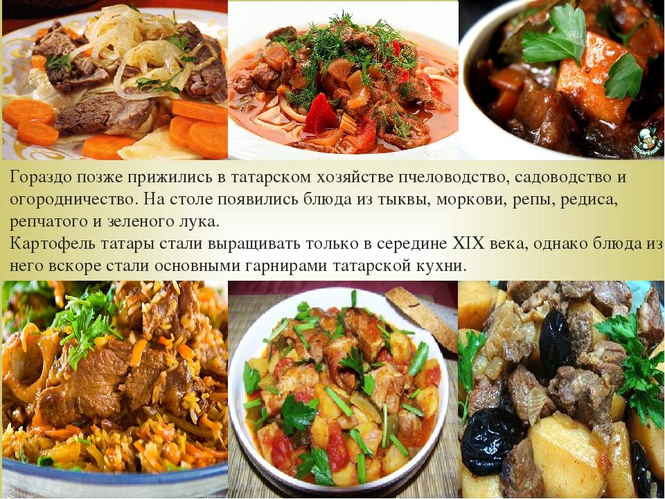 Гораздо позже прижились в татарском хозяйстве пчеловодство, садоводство и ого...