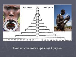 Половозрастная пирамида Судана