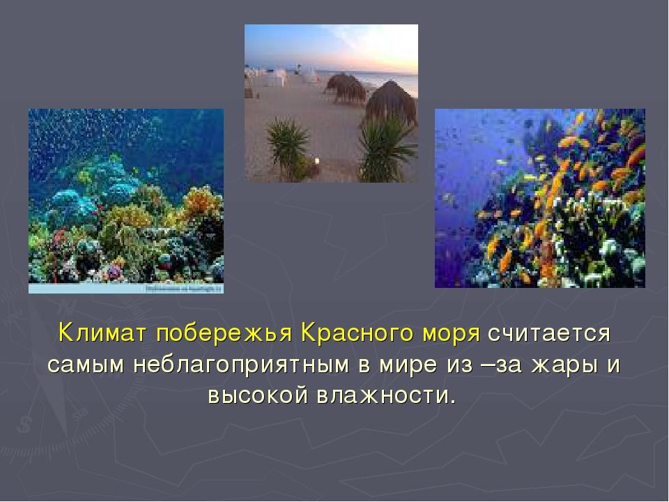 Климат побережья Красного моря считается самым неблагоприятным в мире из –за...