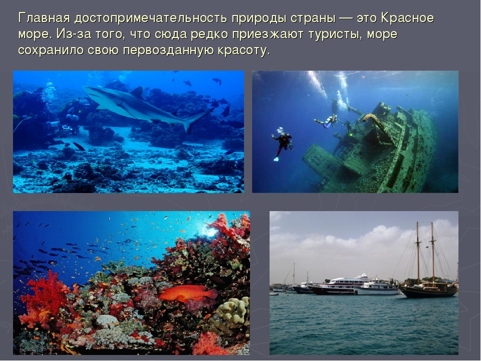 Главная достопримечательность природы страны— это Красное море. Из-за того,...