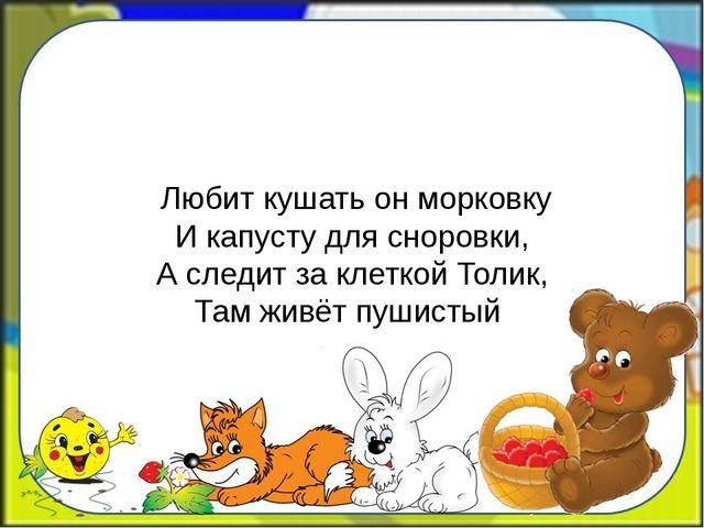 Любит кушать он морковку И капусту для сноровки, А следит за клеткой Толик,...