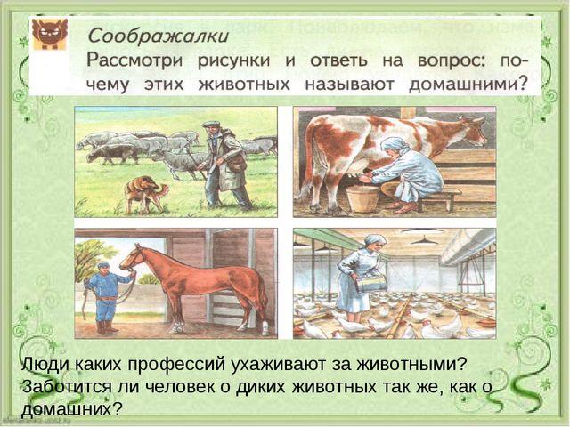 Люди каких профессий ухаживают за животными? Заботится ли человек о диких жи...