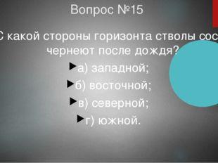 Вопрос №15 С какой стороны горизонта стволы сосен чернеют после дождя? а) зап