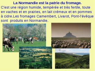 La Normandie est la patrie du fromage. C'est une région humide, tempérée et