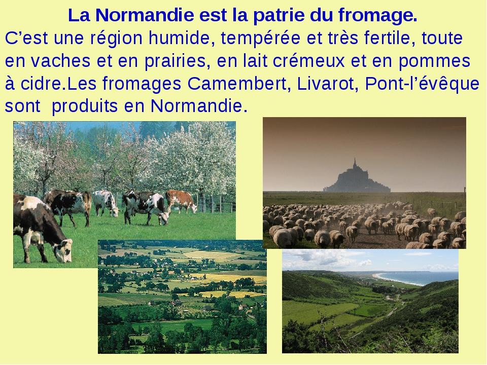 La Normandie est la patrie du fromage. C'est une région humide, tempérée et...