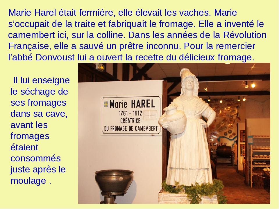 Marie Harel était fermière, elle élevait les vaches. Marie s'occupait de la t...