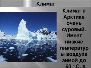 Климат Климат в Арктике очень суровый. Имеет низкие температуры воздуха зимой