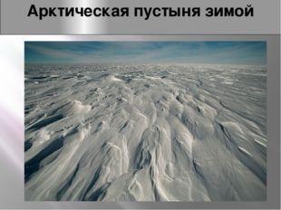 Арктическая пустыня зимой