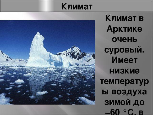 Климат Климат в Арктике очень суровый. Имеет низкие температуры воздуха зимой...