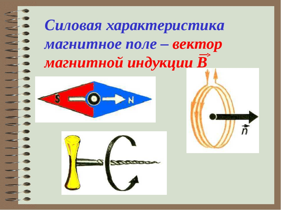 Силовая характеристика магнитное поле – вектор магнитной индукции В