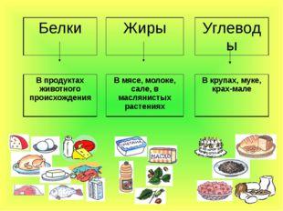 Белки Жиры Углеводы В продуктах животного происхождения В мясе, молоке, сале