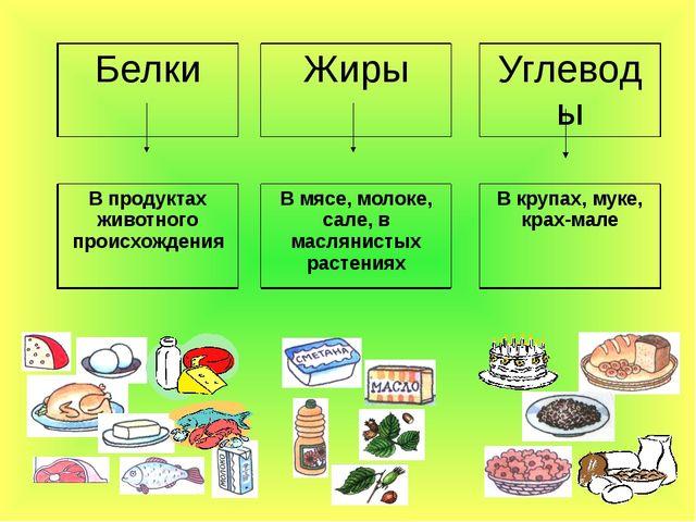 Белки Жиры Углеводы В продуктах животного происхождения В мясе, молоке, сале...
