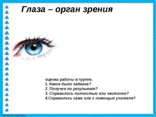 Глаза – орган зрения оценка работы в группе. 1. Какое было задание? 2. Получе
