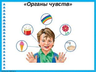 «Органы чувств» FokinaLida.75@mail.ru