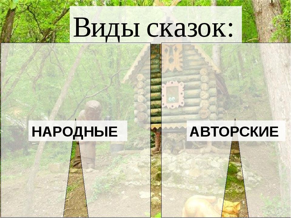 Виды сказок: АВТОРСКИЕ НАРОДНЫЕ