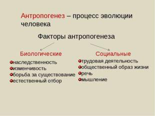 Факторы антропогенеза Биологические Социальные наследственность изменчивость
