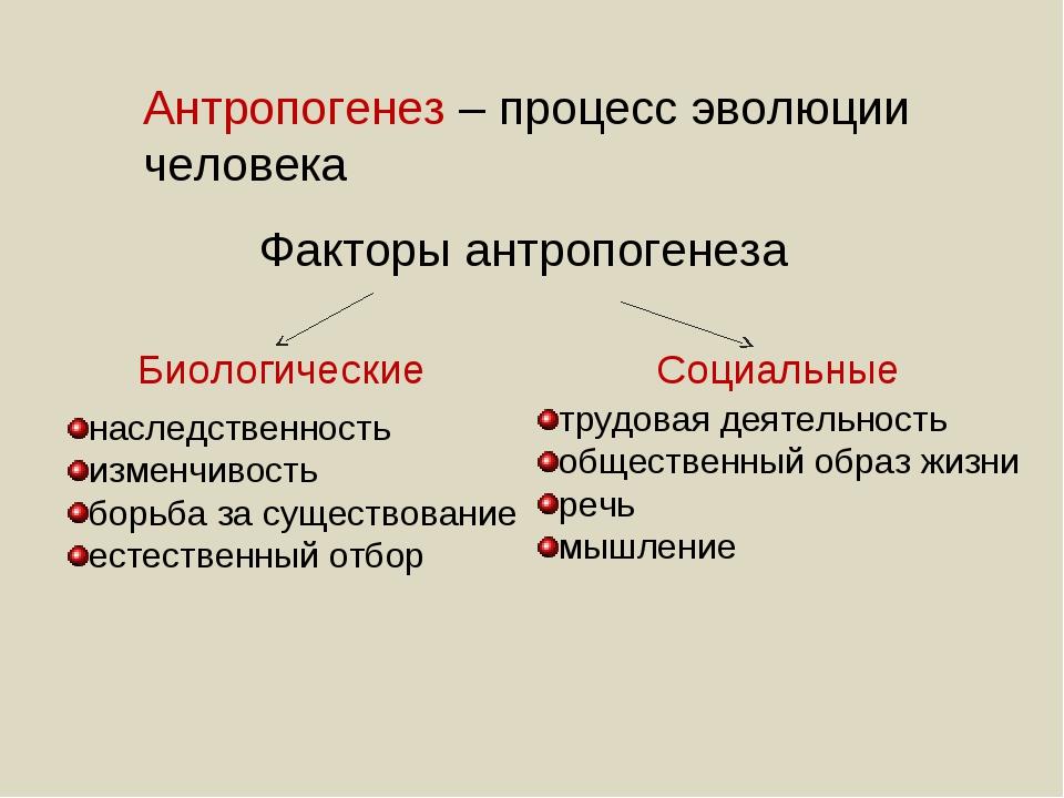 Факторы антропогенеза Биологические Социальные наследственность изменчивость...