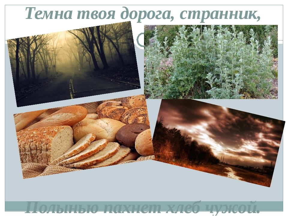 Темна твоя дорога, странник, Полынью пахнет хлеб чужой.