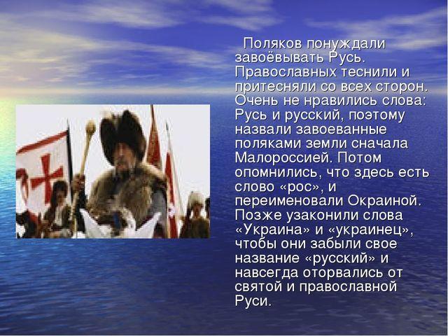 Поляков понуждали завоёвывать Русь. Православных теснили и притесняли со все...