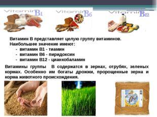 Витамин В представляет целую группу витаминов. Наибольшее значение имеют: - в