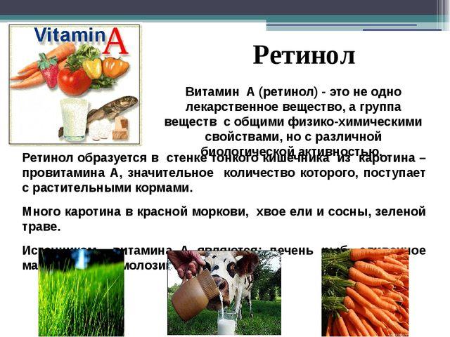 Ретинол образуется в стенке тонкого кишечника из каротина – провитамина А, зн...