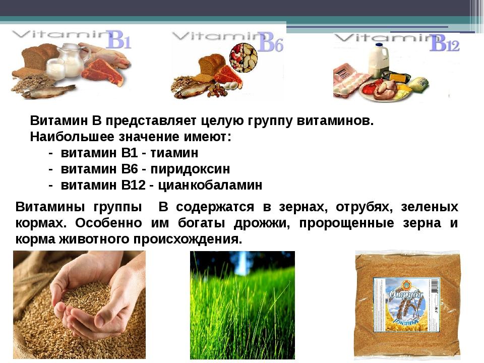 Витамин В представляет целую группу витаминов. Наибольшее значение имеют: - в...