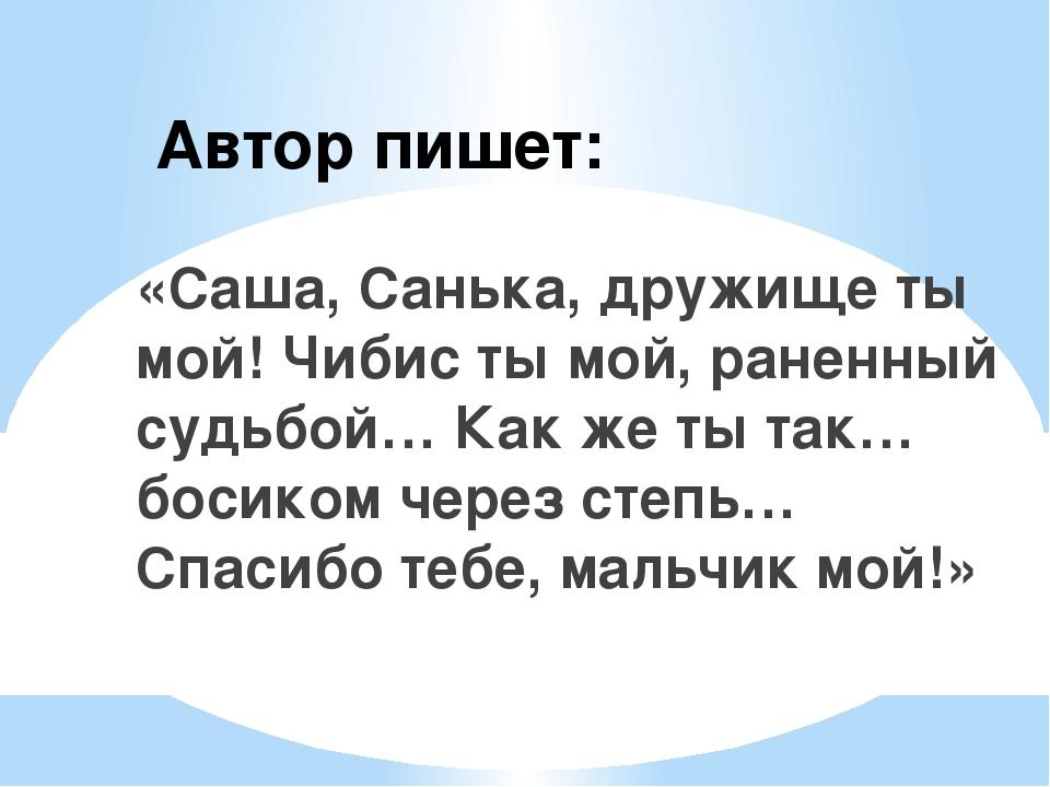 Автор пишет: «Саша, Санька, дружище ты мой! Чибис ты мой, раненный судьбой… К...