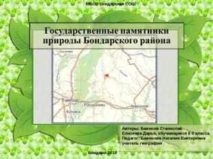 . Авторы: Баженов Станислав Елисеева Дарья, обучающиеся 8 б класса. Педагог: