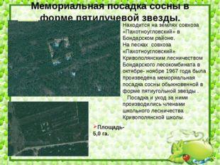 Находится на землях совхоза «Пахотноугловский» в Бондарском районе. На песках