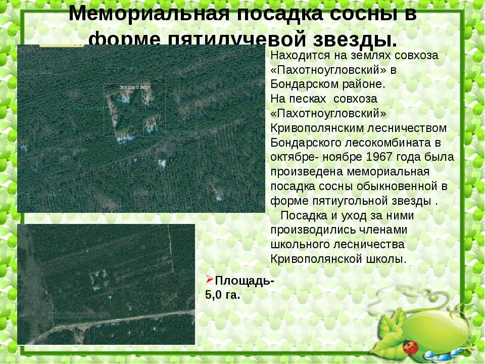 Находится на землях совхоза «Пахотноугловский» в Бондарском районе. На песках...