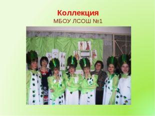 Коллекция МБОУ ЛСОШ №1