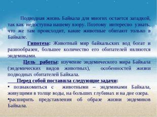 Подводная жизнь Байкала для многих остается загадкой, так как недоступна наш