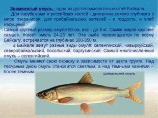 Знаменитый омуль - одно из достопримечательностей Байкала. Для зарубежных и