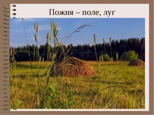 Пожня – поле, луг Электронное пособие