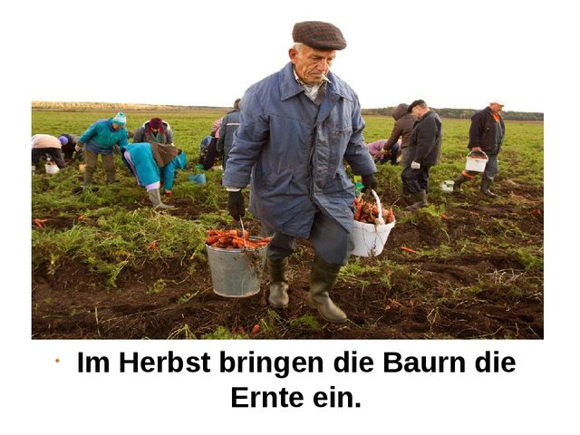 Im Herbst bringen die Baurn die Ernte ein.