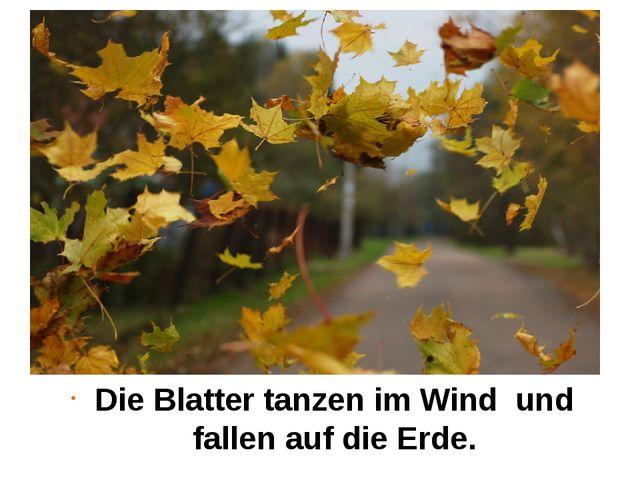Die Blatter tanzen im Wind und fallen auf die Erde.