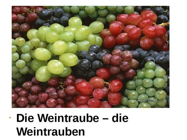 Die Weintraube – die Weintrauben