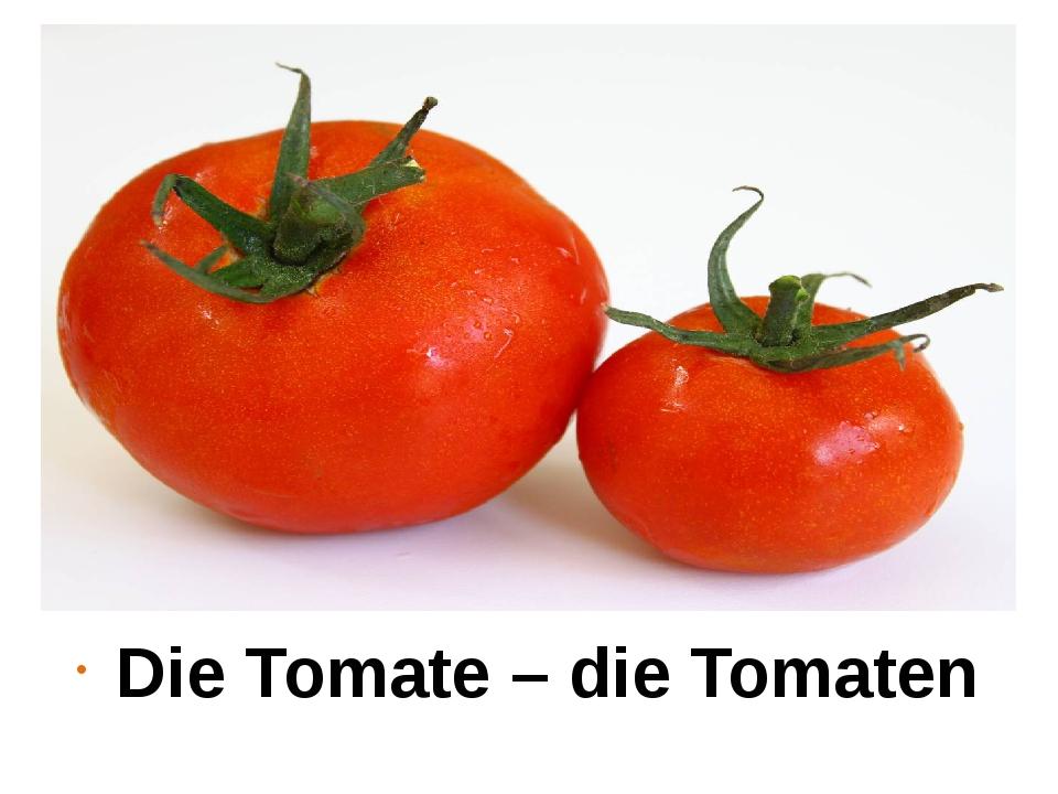 Die Tomate – die Tomaten
