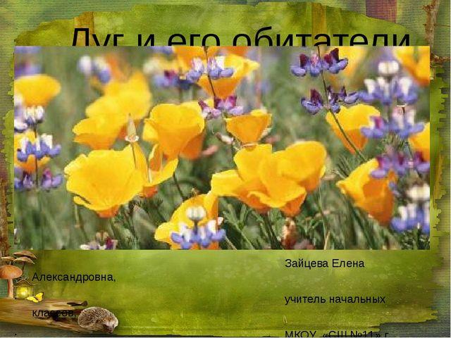 Луг и его обитатели Зайцева Елена Александровна, учитель начальных классов,...
