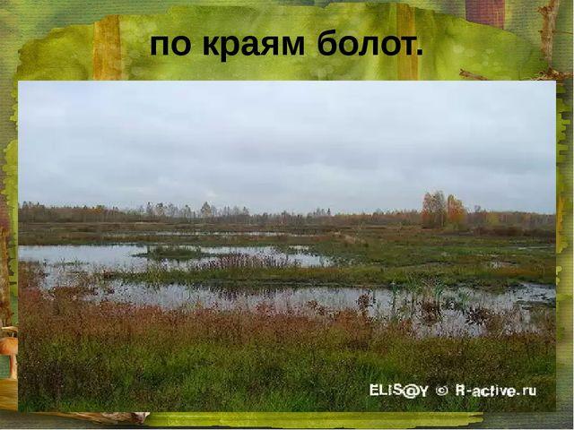 по краям болот.