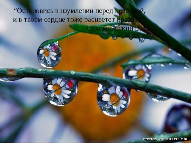 """""""Остановись в изумлении перед красотой, и в твоем сердце тоже расцветет красо..."""