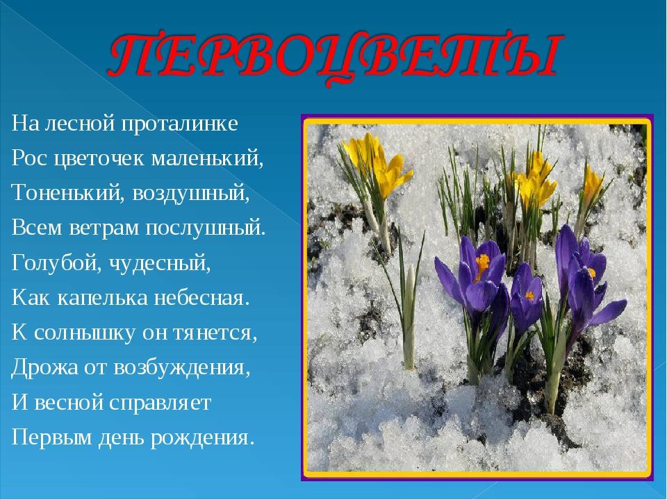 На лесной проталинке Рос цветочек маленький, Тоненький, воздушный, Всем ветра...