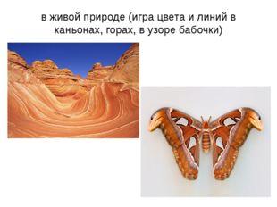 в живой природе (игра цвета и линий в каньонах, горах, в узоре бабочки)