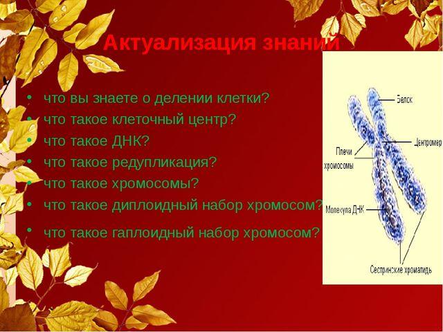 Актуализация знаний что вы знаете о делении клетки? что такое клеточный центр...