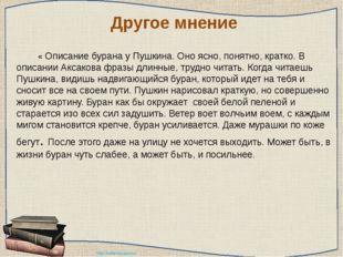 Другое мнение « Описание бурана у Пушкина. Оно ясно, понятно, кратко. В оп